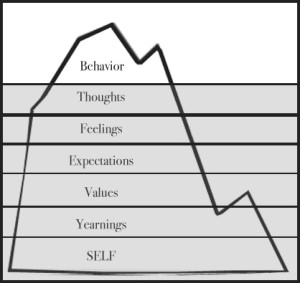 iceberg of behaviours